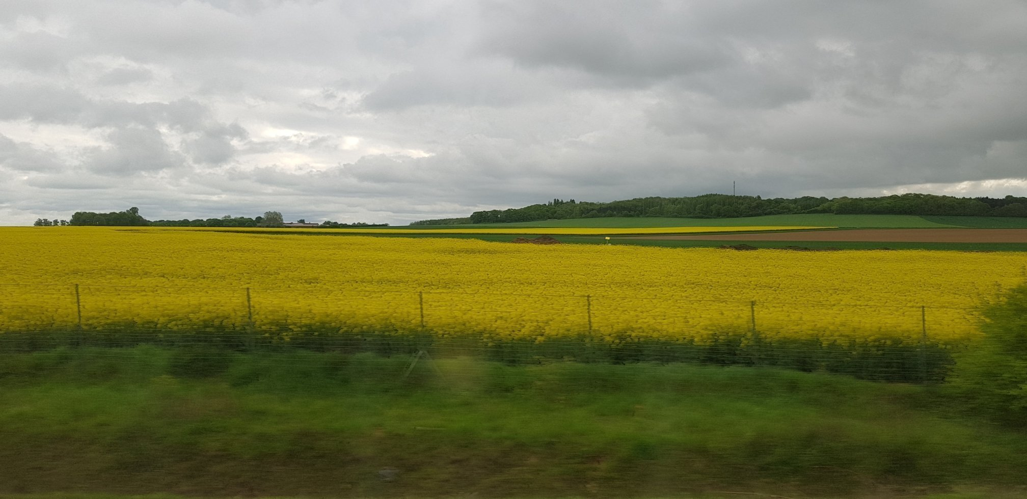 Fields of Northern France